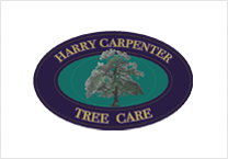 Harry Carpenter